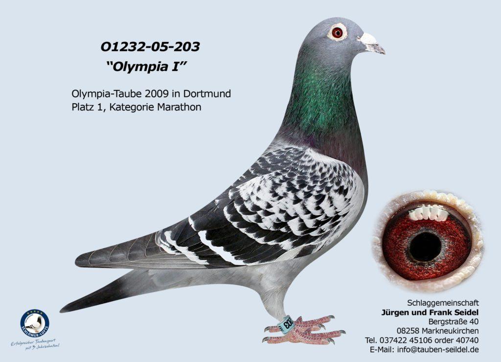 01232 05 203 V geh. Olympiade 2008/2009 im Januar 2009 in Dortmund 1. Platz Marathonklasse E