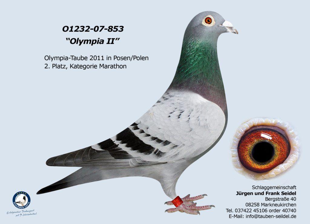 01232 07 853 V Olympiade 2010/11 in Poznan im Febr. 2011 2. Platz Marathonklasse E Deutschland
